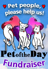 Pet People Please Help Us